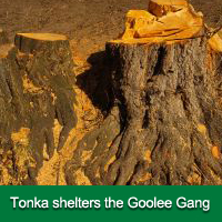 The Adventures of Tonka the Trolley - Volume 4 Chapter 4